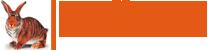 Создание сайтов в Сочи -